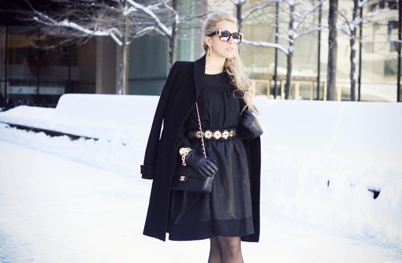 Camilla a-i dress (10 (1)