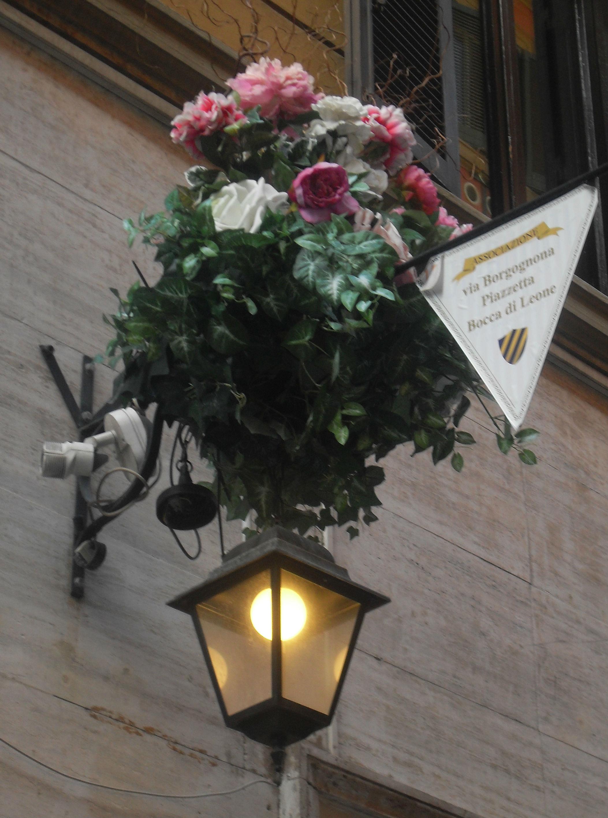 Violettas Roma